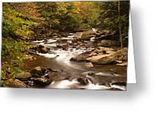 Babcock Creek Scene 4 Greeting Card