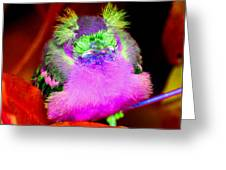 Baby Bird Of A Different Color Greeting Card