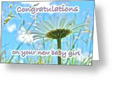 Baby Girl Congratulations Greeting Card - Oxeye Daisies Greeting Card