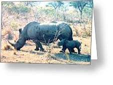 Baby Rhinoceros And Mother Greeting Card