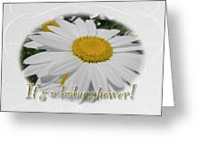 Baby Shower Invitation - Ox Eye Daisy Greeting Card