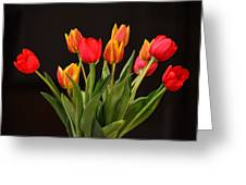 Baby Tulips Greeting Card