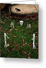 Back Yard Bone Yard Greeting Card by LeeAnn McLaneGoetz McLaneGoetzStudioLLCcom