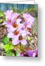 Backyard Blooms Greeting Card
