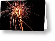 Backyard Fireworks 2012 5 Greeting Card