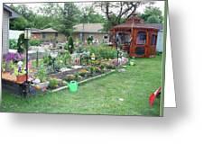 Backyard Flowers Greeting Card