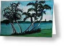 Backyard Palms Greeting Card