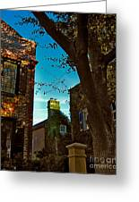 Backyard View Charleston Sc Greeting Card