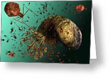 Bacteriophage Viruses Greeting Card by Karsten Schneider