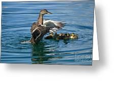 Bad Duck Rising Greeting Card