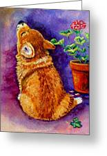 Bad Puppy In Mom's Geranium Greeting Card