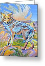 Badland Coyote Greeting Card by Jenn Cunningham