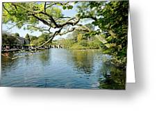 Bakewell Riverside - Through The Branches Greeting Card
