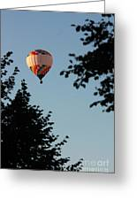 Balloon-7081 Greeting Card