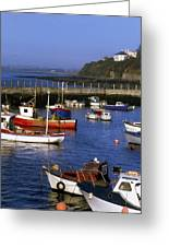 Ballycotton, Co Cork, Ireland Harbour Greeting Card