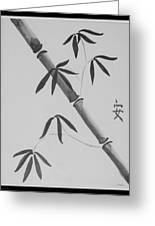 Bamboo Art In Black And White Greeting Card