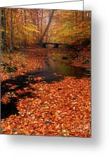 Bamboo Brook Chester New Jersey Greeting Card