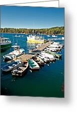 Bar Harbor Boat Dock Greeting Card