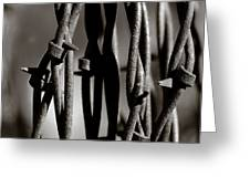 Barbbed Wire 2 Greeting Card