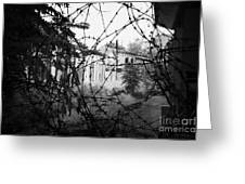 barbed wire across no mans land and restricted area of the UN buffer zone in the green line Greeting Card