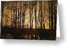 Fall Trees On A Lake Greeting Card