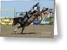 Rodeo Bareback Riding Greeting Card