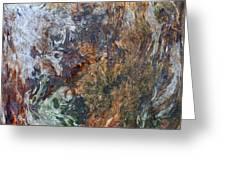 Bark Abstract Greeting Card
