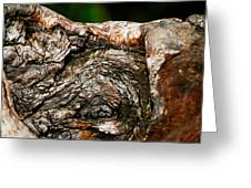 Bark Greeting Card by Christopher Gaston