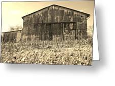 Barn In Brown Greeting Card