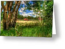 Barn In The Meadow Greeting Card