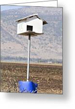 Barn Owl Coop Greeting Card