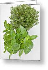 Basil And Thyme Greeting Card by Joana Kruse