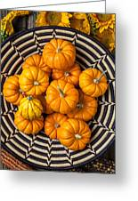 Basket Full Of Small Pumpkins Greeting Card