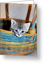 Basket Of Love Greeting Card