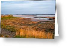Bay At Shannon Airport Ireland 2 Greeting Card