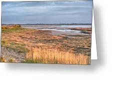 Bay At Shannon Airport Ireland 4 Greeting Card