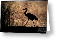 Bayou Walk Greeting Card