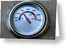 Bbq Thermometer Greeting Card