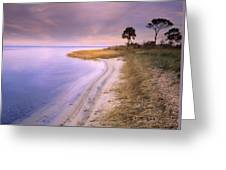 Beach Along Saint Josephs Bay Florida Greeting Card