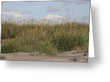 Beach Bluff Greeting Card