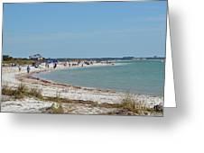Beach Day On Honeymoon Island Greeting Card