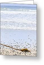 Beach Detail On Pacific Ocean Coast Greeting Card