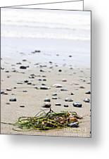 Beach Detail On Pacific Ocean Coast Of Canada Greeting Card