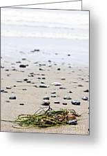 Beach Detail On Pacific Ocean Coast Of Canada Greeting Card