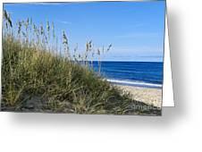 Beach Dunes. Greeting Card by John Greim