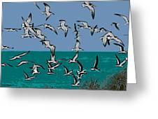 Beach Flight Greeting Card