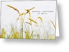Beach Grass .serenity. Greeting Card