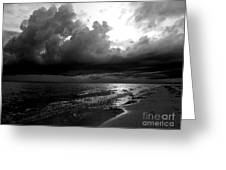 Beach In Black And White Greeting Card