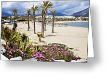 Beach In Puerto Banus Greeting Card