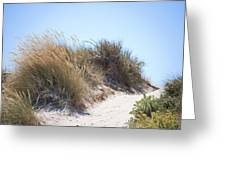 Beach Sand Dunes I Greeting Card